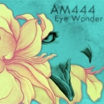 Artwork AM444 album Eye Wonder